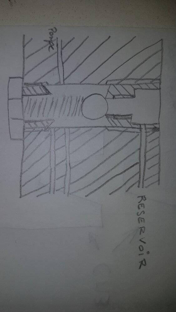 20210401_145851.jpg