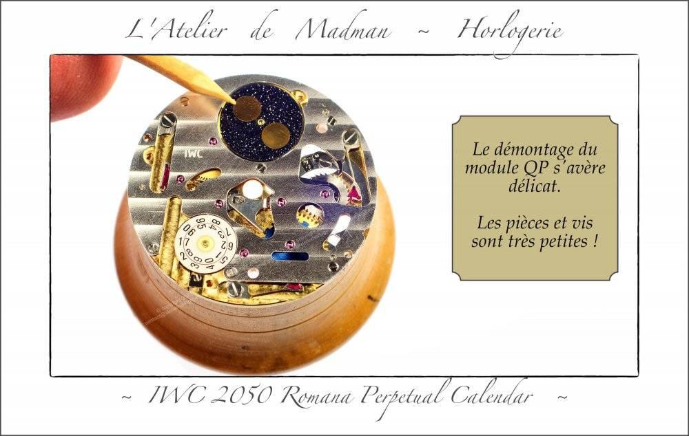 202109-IWC-31-min.jpg