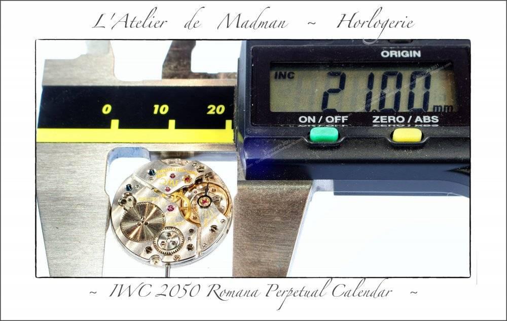 202109-IWC-78-min.jpg