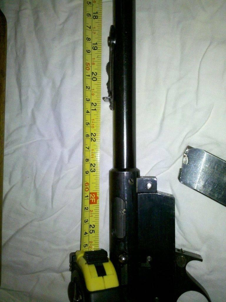 22 LR semiauto rifle 1.jpg