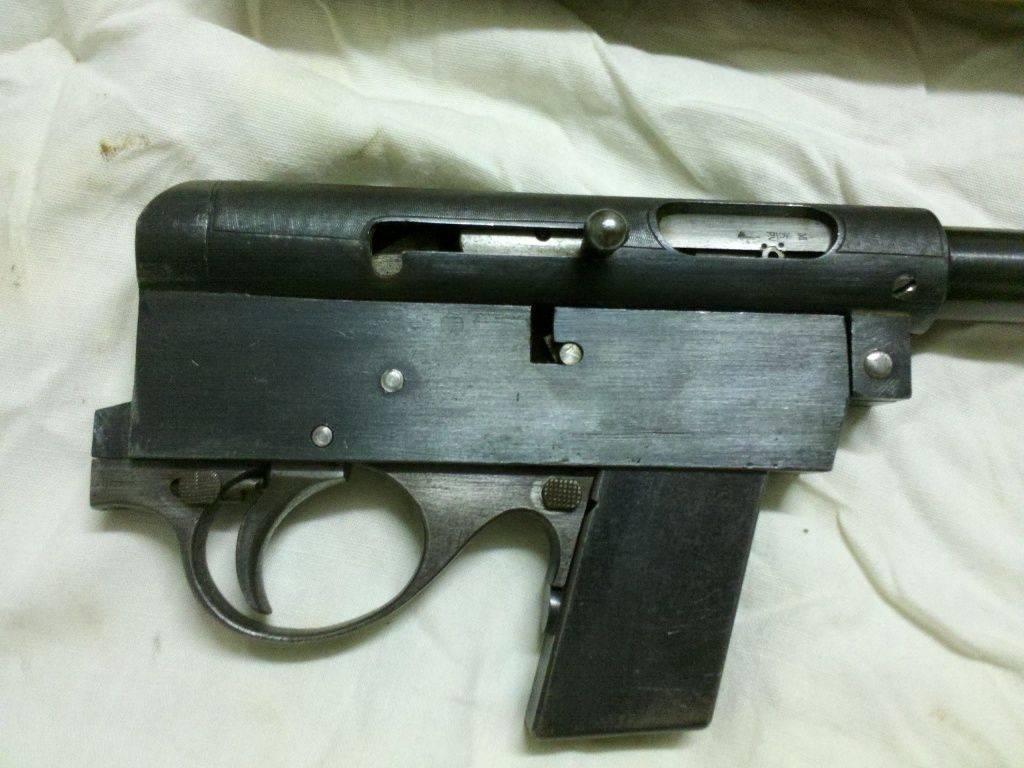 22 LR semiauto rifle  2.jpg