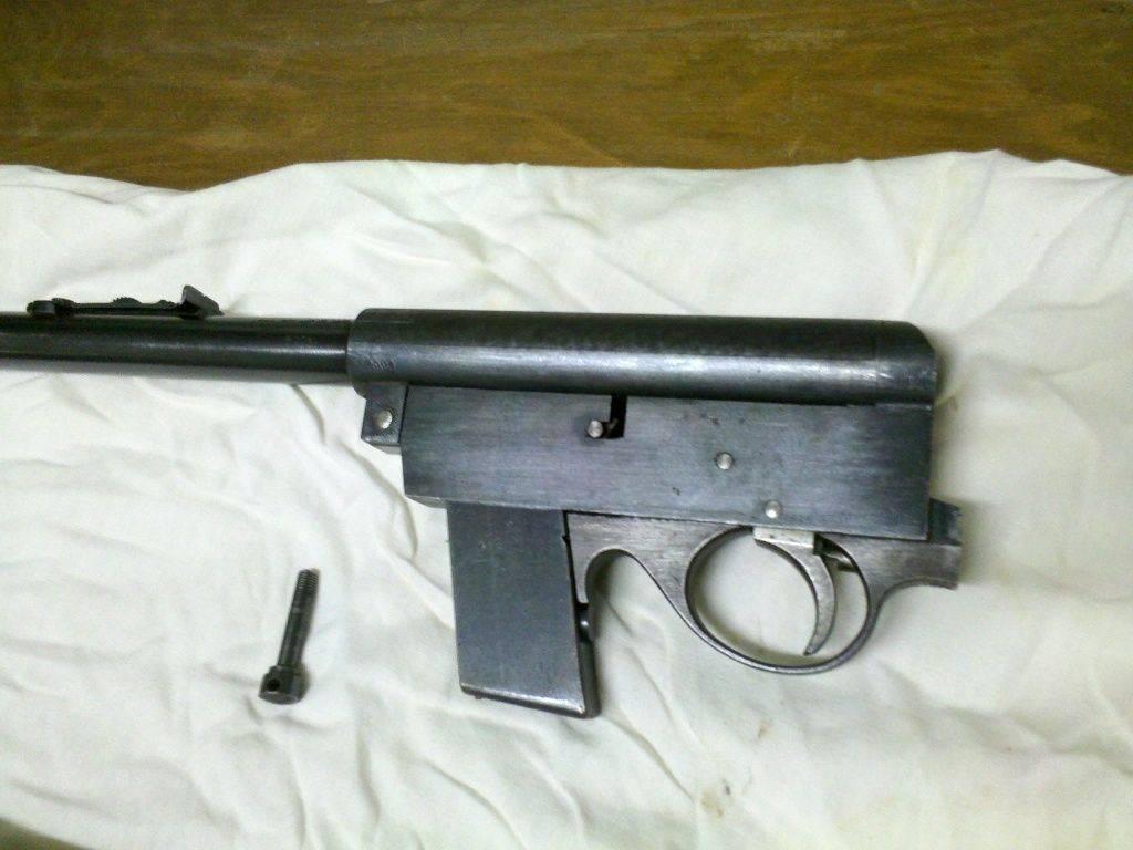 22 LR semiauto rifle 3.jpg