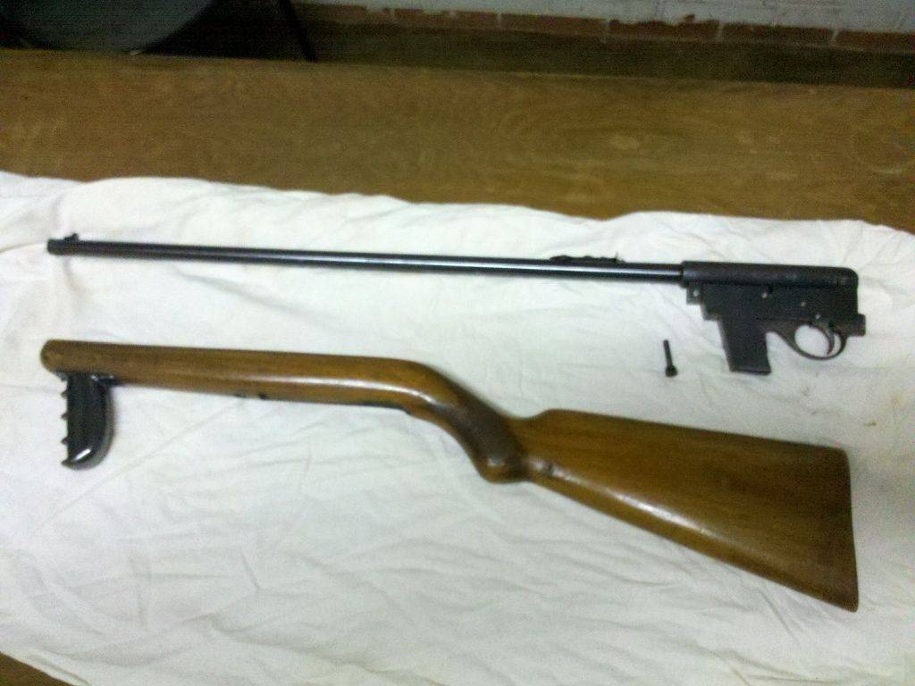 22 LR semiauto rifle  4.jpg