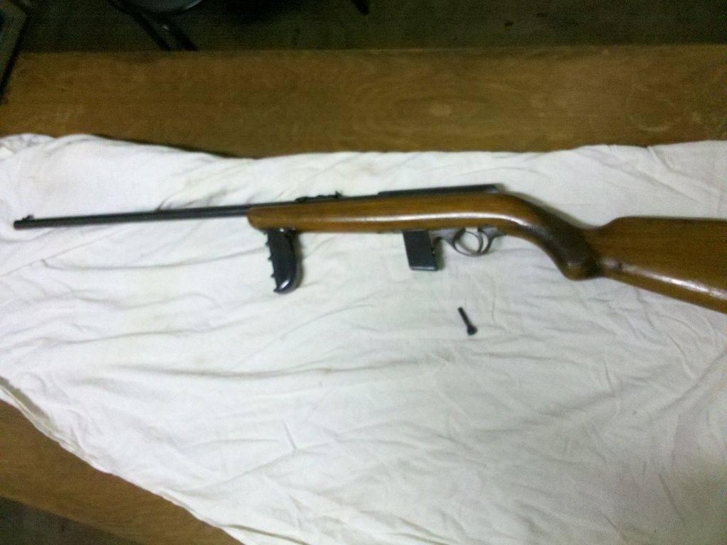 22 LR semiauto rifle.jpg