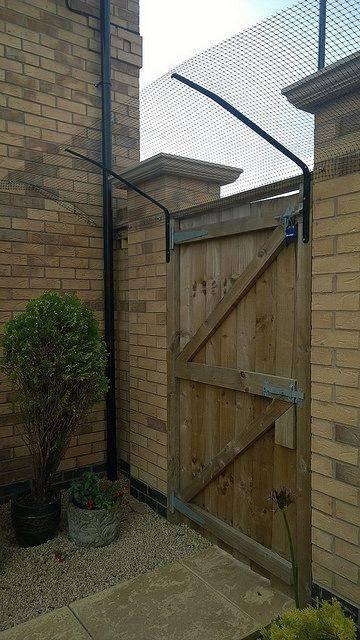 7fc93175e1bafa411d1124a97eed3db4--cat-garden-garden-gates.jpg