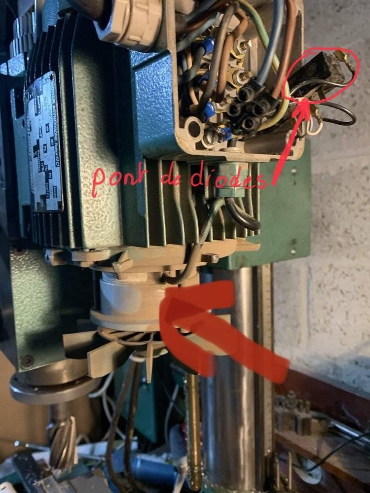 8EC368C3-A78D-409F-A045-109E87750D91.jpeg