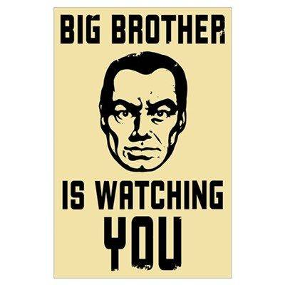 big_brother_is_watching_you.jpg