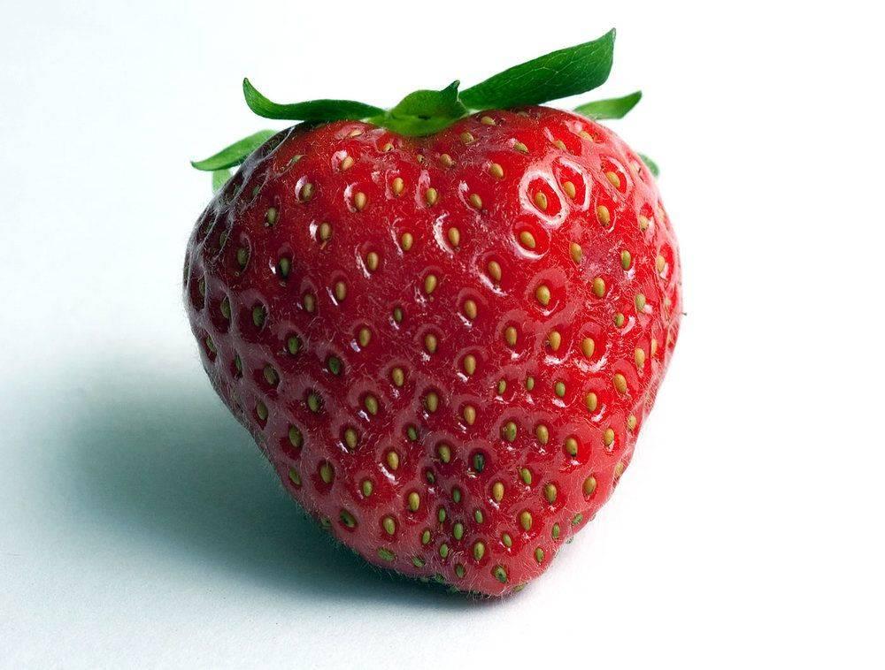 charlotte-fraise-fruit-2.jpg