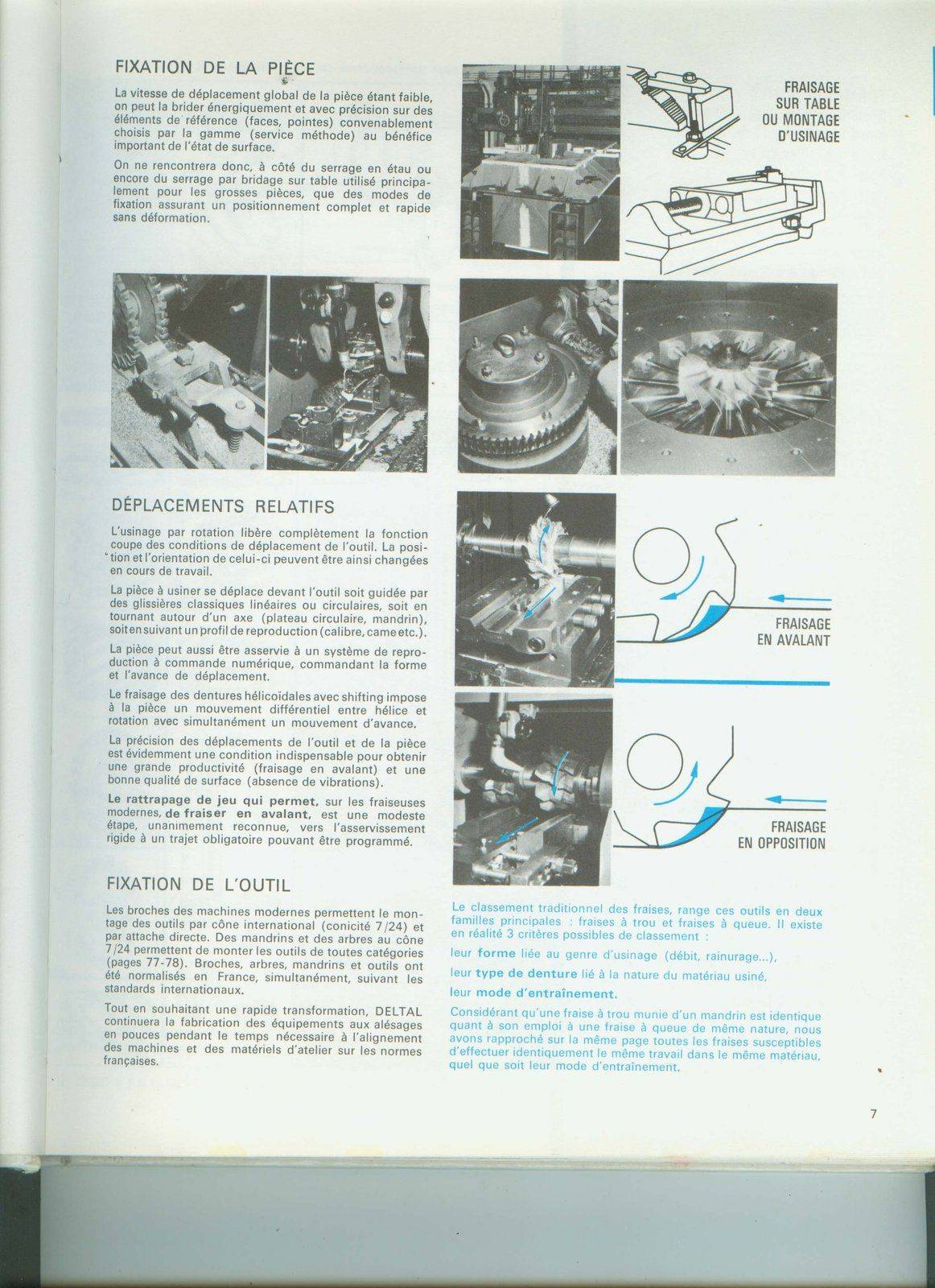 DELTAL 4.jpg
