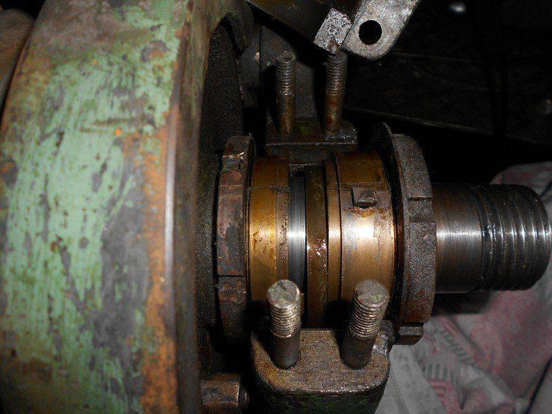 DSCN0564.JPG