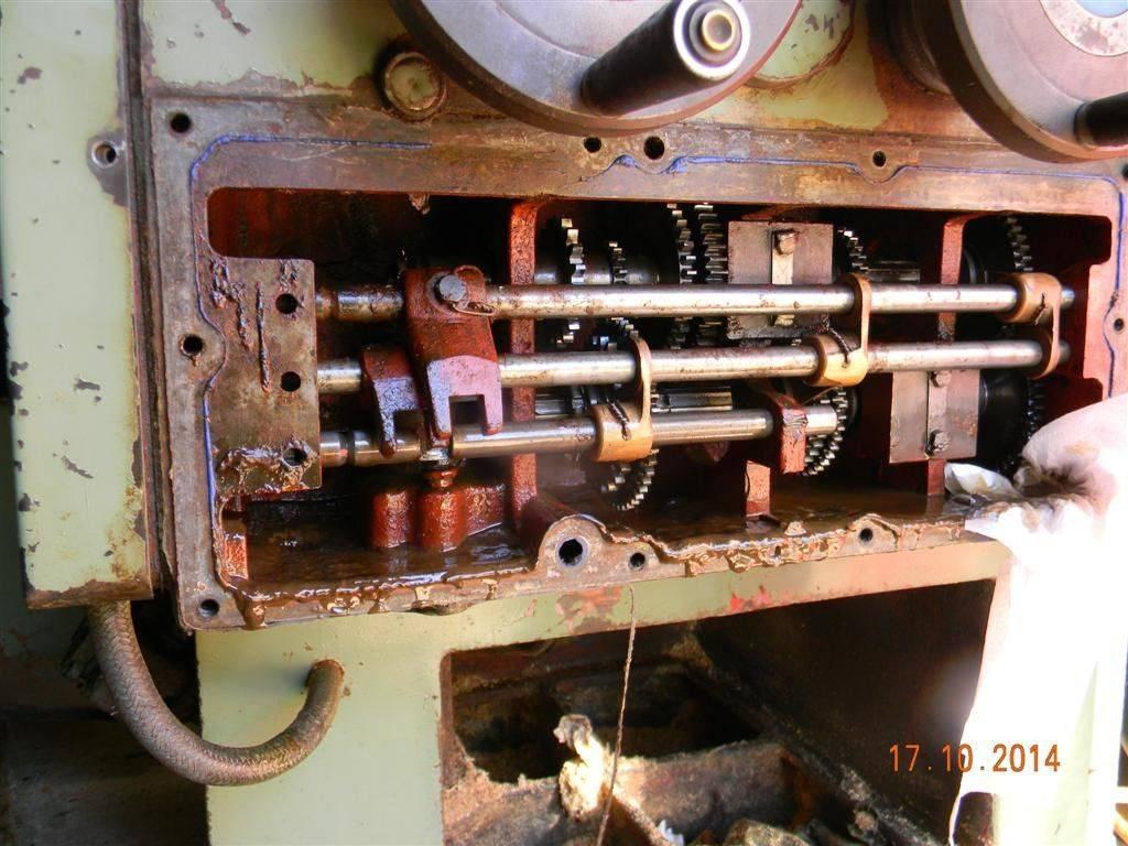 DSCN8083 (Large).JPG