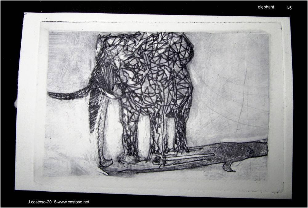elephant_27_05_16_1.jpg