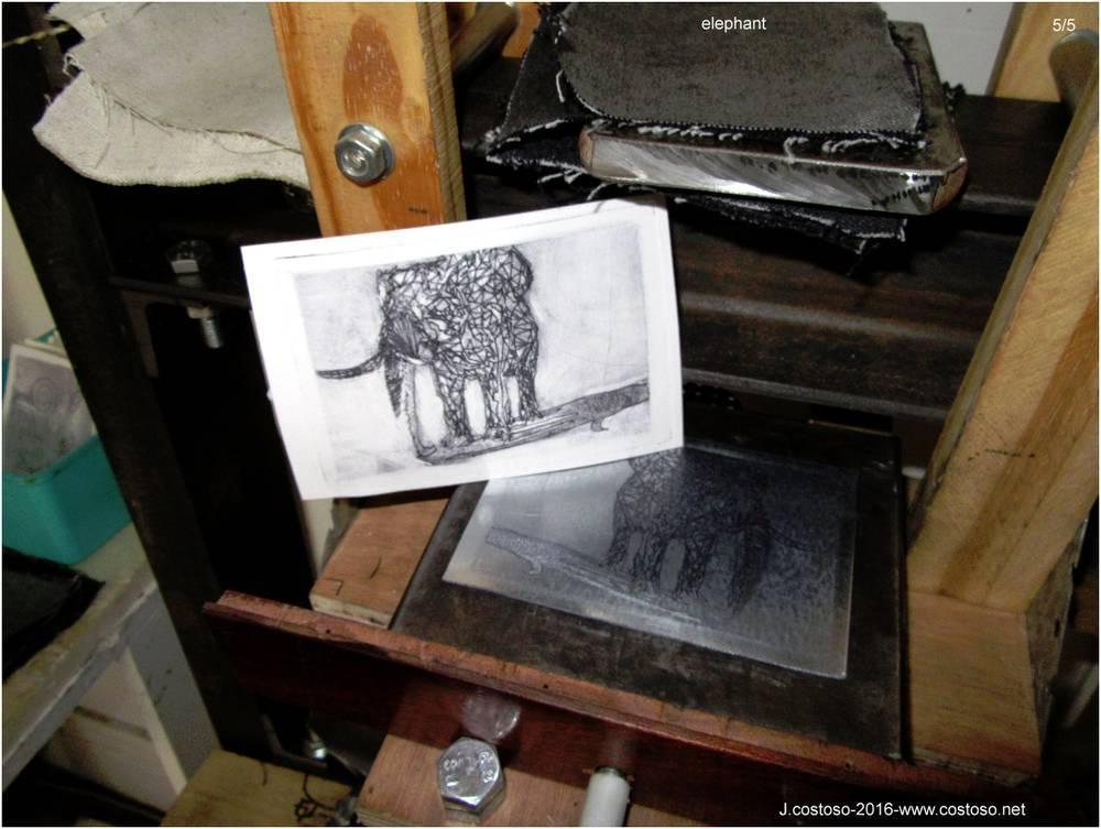 elephant_27_05_16_5.jpg