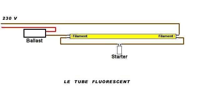 Fluo.jpg