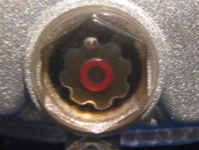 IMG_2466 (Small).JPG