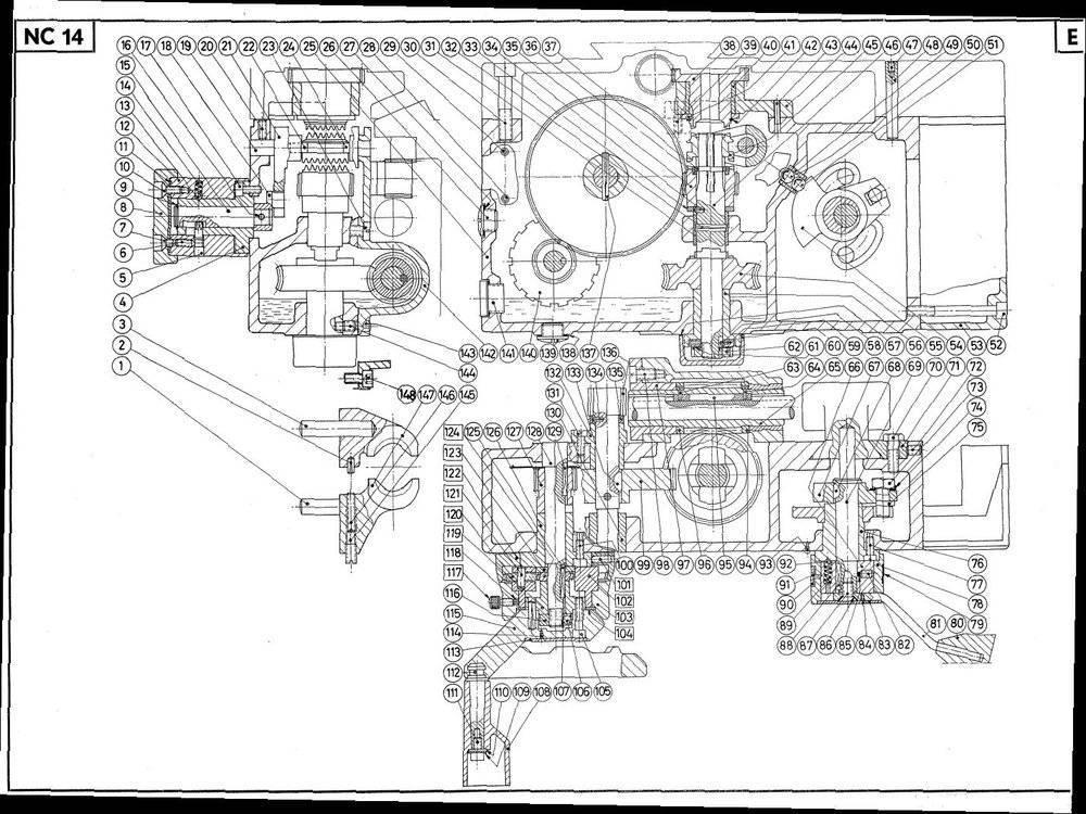 NC14 Fig 14E.jpg