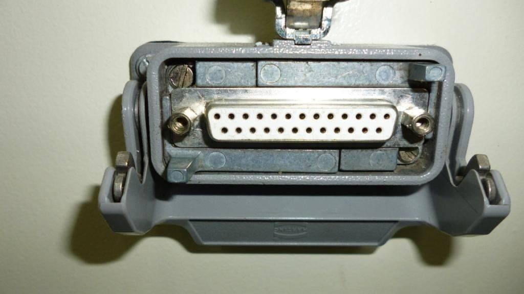 P1000465.JPG