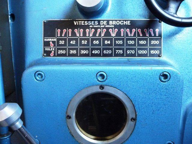 P1010610.JPG