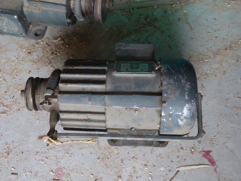 P1020520.JPG