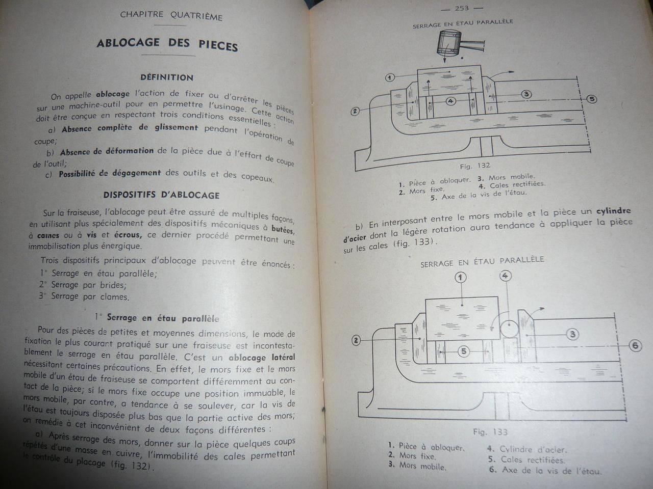 P1040451.JPG