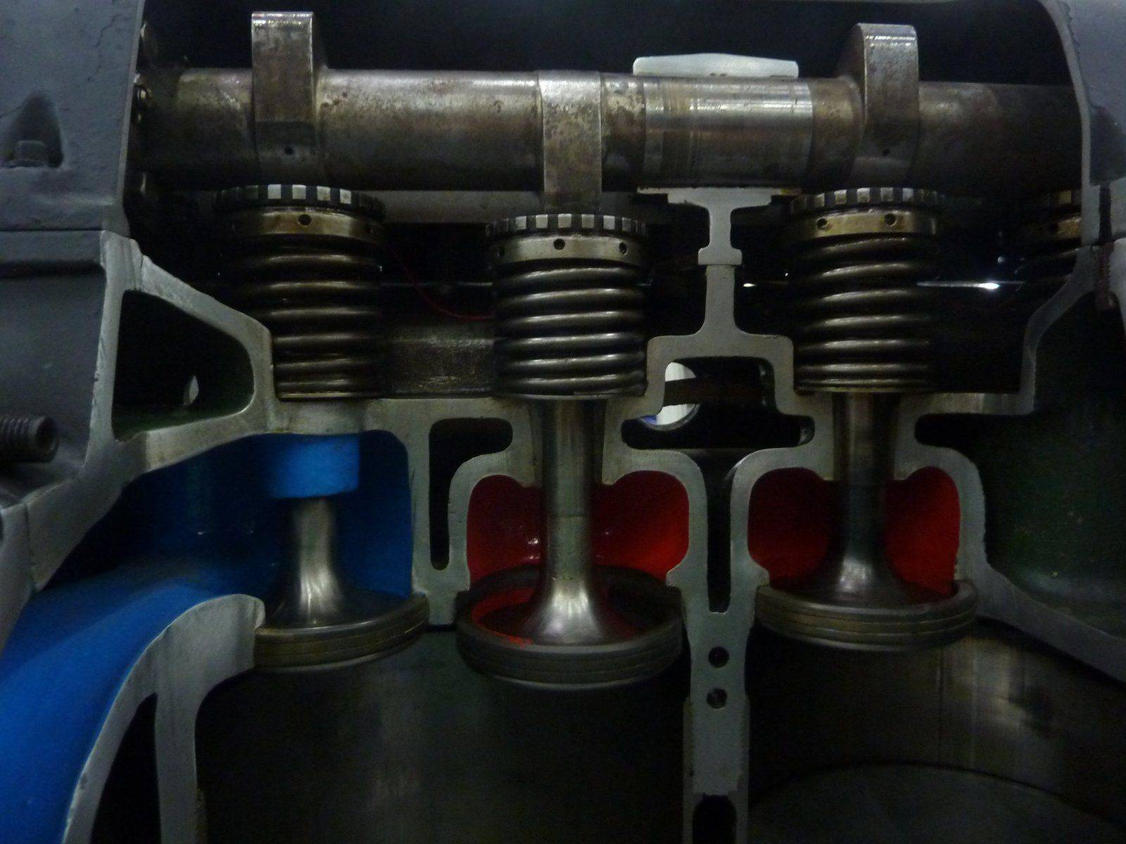 P1120883.JPG