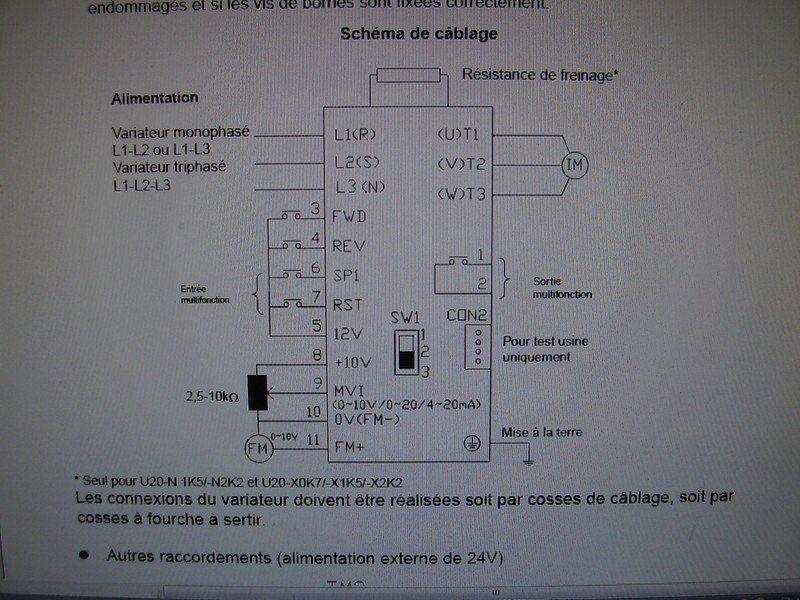 P2130036 (Copier).JPG