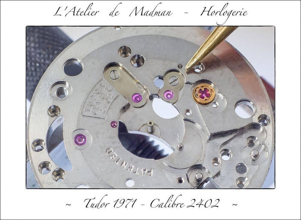 p3046120508-5.jpg