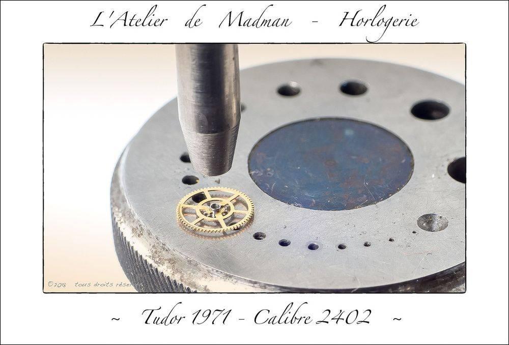 p3066526533-5.jpg