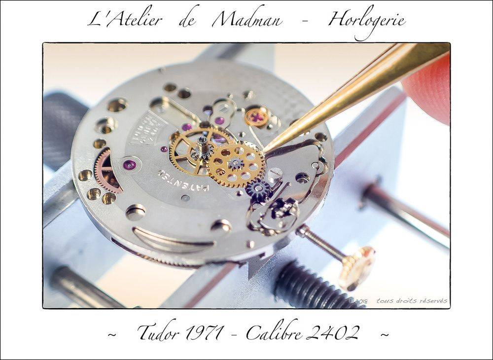 p3066526564-5.jpg