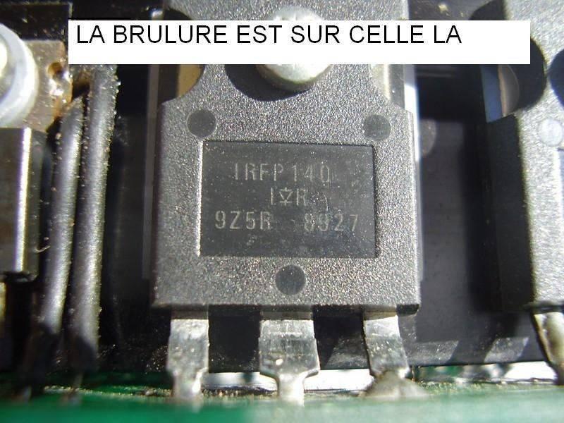 P6300085 (Copier).JPG