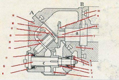 Schéma  tête 2.jpg