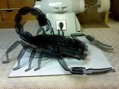 Scorpion 5mm.jpg