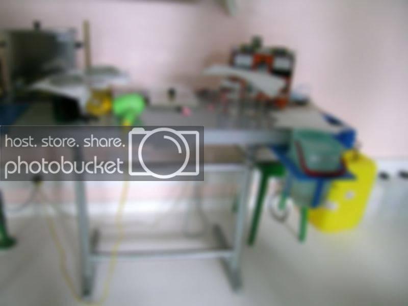 SteyrHalterOct08-006.jpg