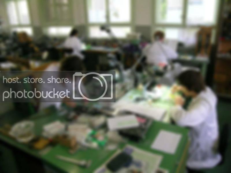SteyrHalterOct08-053.jpg