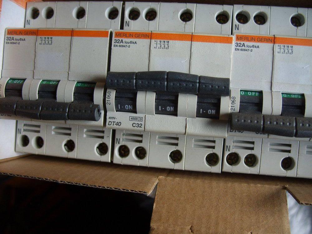 STP85495.JPG