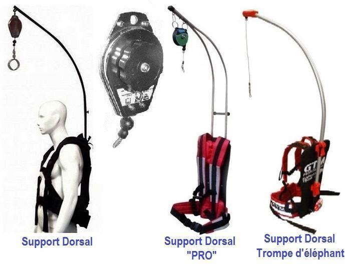 supports-dorsal.jpg